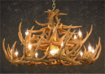 Whitetail 24 Antler Chandelier w/Downlight - SALE