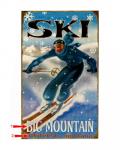 Snowflake Ski Sign