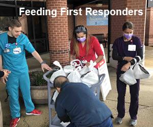 20% off SomaPet