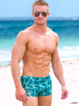 Emerald Mens Swim Hipsters
