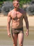 Gold Cheetah Mens Swim Hipsters