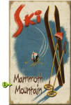 Skis in Snow Personalized Sign - 23 x 39