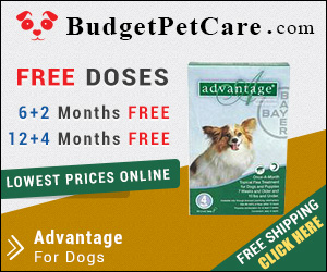 BudgetPetCare.com- Affordable PetCare