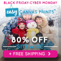 125x125 - 3 DAY BLACK FRIDAY SALE: 80% Off & Free Shipping!